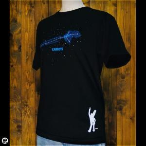 Tシャツ メンズ レディース 6.2oz半袖Tシャツ  星に願いを ブラック redbros