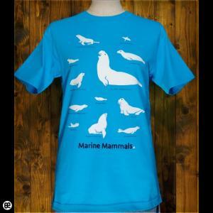 Tシャツ/メンズ/レディース/6.2oz半袖Tシャツ : Kaiju : カリビアンブルー|redbros