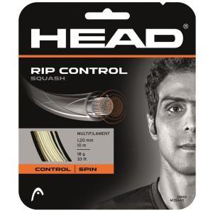 ヘッド(HEAD) スカッシュ ガット リプ コントロール スカッシュ 281276