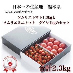 九州 熊本産 ソムリエトマト 訳あり 4kg(16玉〜30玉) もぎたてを順次発送|redup