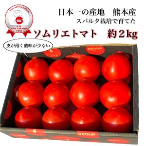 トマト 送料無料 九州 熊本産  ソムリエトマト 1.3kgもぎたてを順次発送 6月20日まで|redup