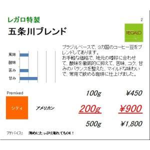 珈琲豆 同サイズ 3個まで同梱可 レガロ 五条川ブレンド 100g|regalocoffee