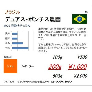 珈琲豆 同サイズ 3個まで同梱可 ブラジル デュアスポンチス農園 RCS 完熟ナチュラル 100g|regalocoffee
