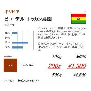 珈琲豆 同サイズ 3個まで同梱可 ボリビア ピコ・デル・トゥカン農園 ティピカ 100g|regalocoffee