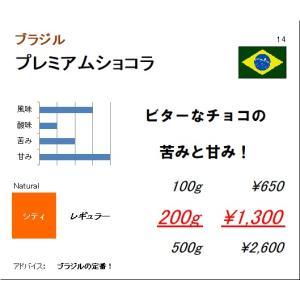 珈琲豆 同サイズ 3個まで同梱可 ブラジル プレミアムショコラ 100g|regalocoffee