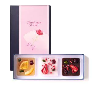 鶴屋吉信 母の日掛け紙付き 菓の彩 ドライフルーツとようかんの、あたらしい出逢い。 ギフト