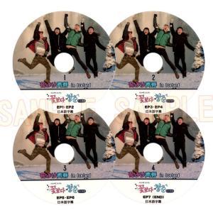 【韓流DVD】 花より青春 in ICELAND (EP1-EP7) 完 4枚セット★チョジョンソク Chojungseok / ジョンウ Jungwoo / カンハヌル KangHaNeul|rehobote