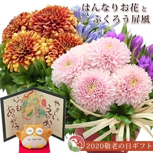 敬老の日 花 ギフト プレゼント りんどうとピンポンマムの生花アレンジメントと屏風ふくろうのセット