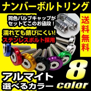 ナンバーボルトリング ナンバープレート 錆びに強いステンレス製 LED字光式対応の25mmロングボル...
