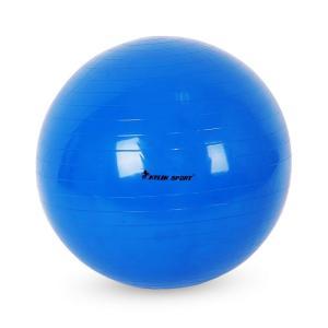 素材:PVC 重量:75cm:1.1kg/65cm:0.9kg;耐荷重:200kg 付属内容:ボール...