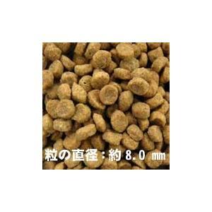 ソルビダ グレインフリー チキン 室内飼育体重管理用 1.8kg×2個セット インドアライト犬用 ソルビダ(SOLVIDA) n|relish|02