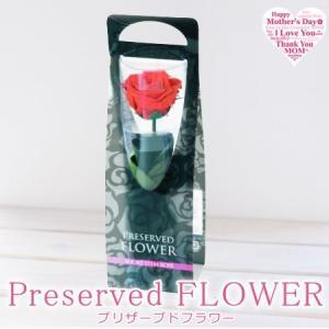 プリザーブドフラワー - PRESERVED FLOWER -|remercier