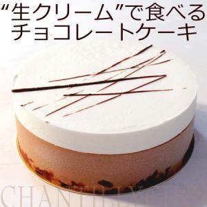 ギフト チョコレート ケーキ シャンティ・ ショコラ〔3〜4人分〕 誕生日ケーキ 御祝い プレゼント|remercier
