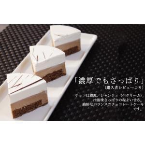 ギフト チョコレート ケーキ シャンティ・ ショコラ〔3〜4人分〕 誕生日ケーキ 御祝い プレゼント|remercier|02