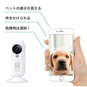 離れていてもしっかり見守る、安心お留守番セット|eCamera(イーカメラ)、eRemote mini(イーリモートミニ)、eSensor(イーセンサー)|remono|03