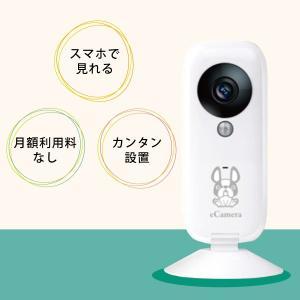 ペットも見守れるホームセキュリティeCamera(イーカメラ) 月額利用料なし・簡単設置・スマホで見守る remono 02