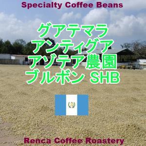 コーヒー豆 送料無料 グァテマラ 1Kg まとめ割 アンティグア アゾテア農園 ブルボン シティロースト 珈琲豆|rencacoffee