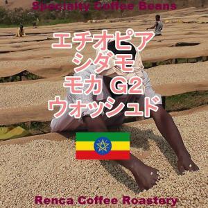 コーヒー豆 送料無料 エチオピア モカ シダモ 100g G2 ハイロースト 珈琲豆 ポイント消化|rencacoffee