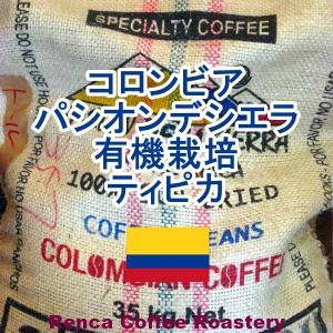 コーヒー豆 送料無料 コロンビア 250g まとめ割 有機栽培 パシオン-デラ-シエラ フレンチロースト 珈琲豆|rencacoffee