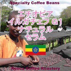 コーヒー豆 送料無料 エチオピア 1Kg まとめ割 イルガチェフ G1 ナチュラル モカ ハイロースト セラム 珈琲豆 rencacoffee