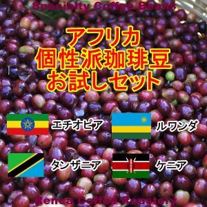 コーヒー豆 初回限定 お試し 送料無料 100gx4種類 アフリカ 個性派 珈琲豆 rencacoffee