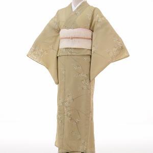 夏物 絽 薄物 着物 レンタル M ワンタッチ 簡単 黄緑 萩 rental-kimono