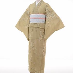 夏物 紗紬 薄物 着物 レンタル M ワンタッチ 簡単 黄緑 萩 rental-kimono