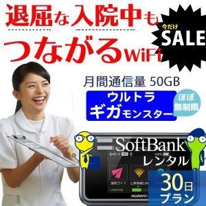 wifi レンタル 国内 ほぼ無制限 30日 ソフトバンク e5383 ポケットwifi レンタル ...