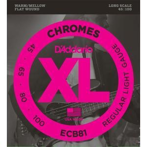 【数量限定】D'Addario XL ECB81 CHROMES【並行輸入品】|repairgarage