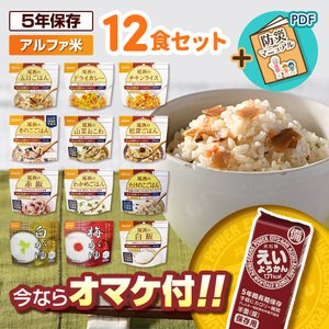 非常食 防災食 アルファ米 12種類 セット 尾西食品 送料無料 ※軽減税率対象商品