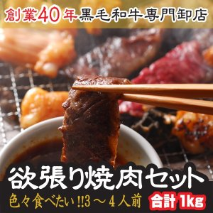 焼肉 御中元 セット 色々食べたい 欲張り 焼肉セット 3〜4人前 計1キロ 宮崎牛 カルビ や 牛...