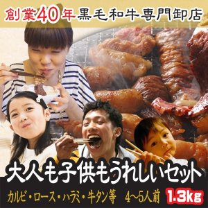 肉 大人も子供も嬉しい 4〜5人前 和牛 カルビ ロース 特選ハラミ 牛タン 等 焼肉 送料無料