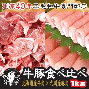 肉 もつ鍋 牛豚食べ比べ 北海道十勝道南 牛モモスライス × 九州産 豚肉 ローススライス 計 1k...