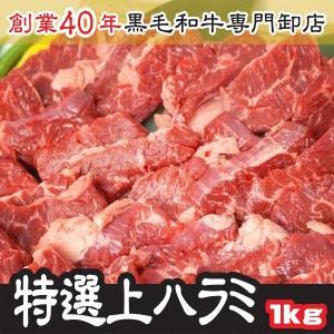 焼肉 御中元 特選 上ハラミ サガリ 500g×2パック 計 1kg ホルモン 送料無料