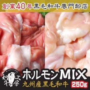 肉 2021 ギフト 鍋 九州産黒毛 和牛ホルモン MIX 250g 小腸 赤センマイ 味付けなし ...