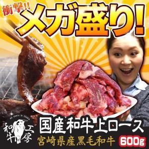 肉 2021 ギフト 宮崎県産 黒毛和牛 上ロース 200g×3パック 計600g ギフト 送料無料