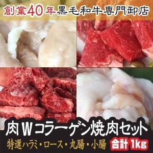 4/9〜15限定セール!20%OFF! W コラーゲン 焼肉セット 3〜4人前 特選ハラミ 国産牛ロ...