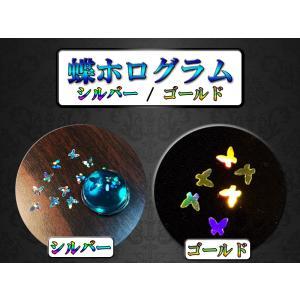 蝶ホログラム(S/G)|resindou47