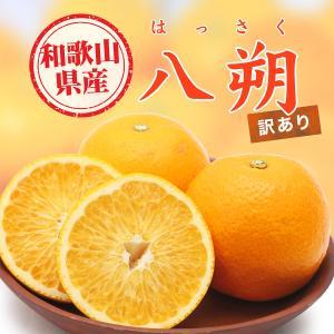 八朔 はっさく 和歌山県産 みかん 10kg 訳あり 2S〜Lサイズ