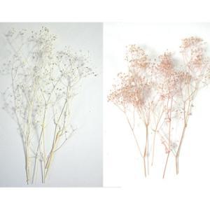 カスミソウ プリザーブドフラワー 花材 かすみ草