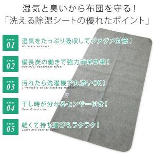 除湿シート 洗える ミニサイズ 60×120cm|reveur|02