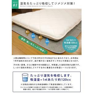 除湿シート 洗える ミニサイズ 60×120cm|reveur|03