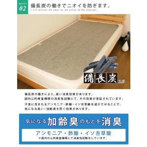 除湿シート 洗える ミニサイズ 60×120cm|reveur|04