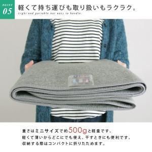 除湿シート 洗える ミニサイズ 60×120cm|reveur|07