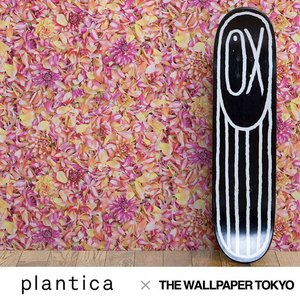 plantica 壁紙 クロス 不織布 デザイナーズ コラボ 貼ってはがせる壁紙 rewall
