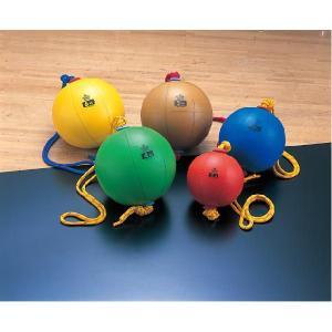 ニシスポーツ スウイングメディシンボール(4kg) 陸上 ランニング ニシ・トレーニング用品 T5914 rhythmic-rhythmy