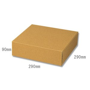 HEIKO 箱 ナチュラルボックス Z-5 10枚入 G-BOX-55