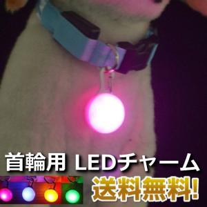 首輪用 LED ライト チャーム 犬 夜間安心 光る 送料無料|ribution