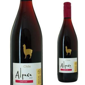 サンタ ヘレナ アルパカ ピノノワール 750ml  ワンコイン サンタ・ヘレナ 赤ワイン ricaoh
