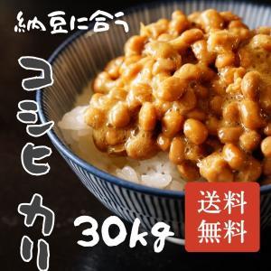 クーポン付★新米!!平成28年千葉県産こしひかり30kg 一...
